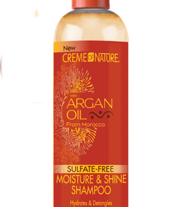 Shampoo-Creme-of-Nature-Argan-Oil-Moisture-Shine-Shampoo